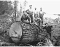 Choker setters, Lewis Mill and Timber Company, ca 1922 (KINSEY 207).jpeg