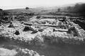 Cholades. Tempel E, översiktsbild från väster. Soli - SMVK - C03628.tif