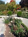 Christchurch Botanic Gardens 06.JPG
