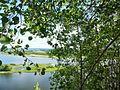 Chusovskoy r-n, Permskiy kray, Russia - panoramio (139).jpg