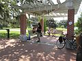 City Park New Orleans 24 Sept 2016 Great Lawn 06.jpg