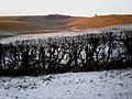 Cleaving Coombe in the snow and ice - geograph.org.uk - 1361062.jpg
