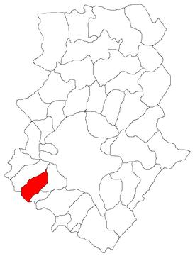 Clinceni City