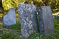 Cmentarz sienna 19.jpg