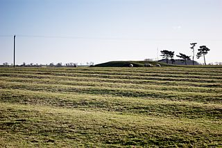 Ridge and furrow Archaeological pattern of ridges and troughs created by a system of ploughing used in Europe during the Middle Ages, typical of the open field system