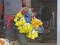 Colourful Bulbs.jpg
