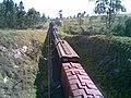 Comboio parado no pátio de cruzamento Convenção (ZFY), mas com os vagões finais ainda na linha principal - Variante Boa Vista-Guaianã km 194 em Itu - panoramio - Amauri Aparecido Zar… (1).jpg
