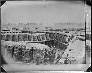 Siege of Petersburg - Confederate Trenches. Fascine Trench Breastworks, Petersburg, Va. – NARA – 524792