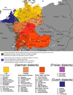 German dialects - Distribution of the native speakers of major continental West Germanic dialects today (dialects of the following languages: Dutch, German, and Frisian). The colours in this map do not reflect the actual relationship between the languages or dialects.