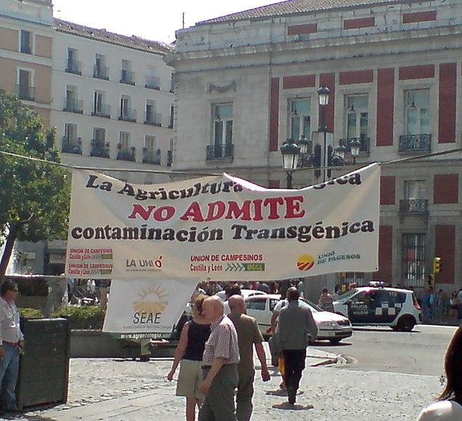 File:Contra los transgénicos - Madrid - 20080830.jpg