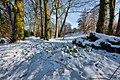 Cottingham Park in the snow - panoramio.jpg