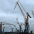 Cranes Brest harbour-IMG 9508.JPG