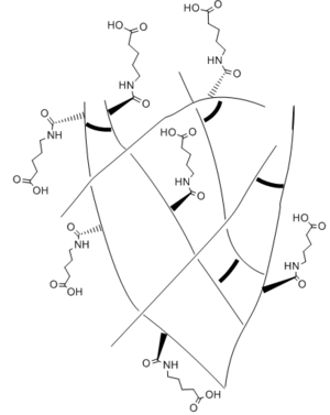 Self-healing hydrogels - An example of a dangling chain self healing hydrogel network. The carboxylic acid tail groups react with one another to crosslink the backbone carbon chain of the self healing hydrogel. In addition, the hydrophilic functional groups ensure the network readily absorbs water.