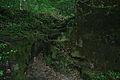 Cruce de ríos (4618033866).jpg