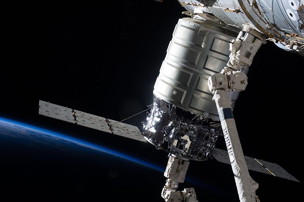 Cygnus Orb-D1.8