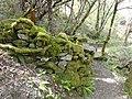 DSC06257 Fraga da Marronda, Alto Eo, Lugo, Galicia, castro.jpg