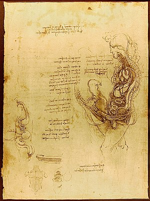 "Human reproduction - ""Coition of a Hemisected Man and Woman"" (c. 1492) by Leonardo da Vinci."