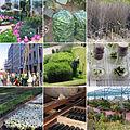 Delatnosti hortikulture.jpg