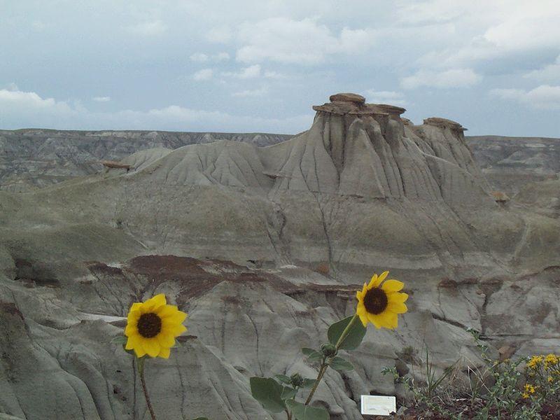 州立恐竜公園