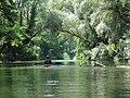 Discesa del Tevere in kayak - panoramio (3).jpg