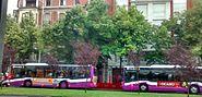 Dos autobuses en la Avenida Manuel Rivera