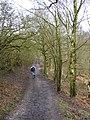 Downs Banks Path - geograph.org.uk - 1701076.jpg