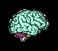 Dr. Eric Grossi Neurocirurgião bh.png