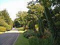 Drive, Trengwainton Garden - geograph.org.uk - 1406947.jpg