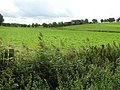 Drummond Townland - geograph.org.uk - 1454088.jpg