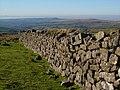 Dry stone wall, Wapsworthy Common - geograph.org.uk - 299284.jpg