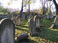 Dukla Jewish cemetery 7.jpg