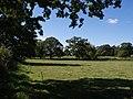 Earnshill Park - geograph.org.uk - 556533.jpg