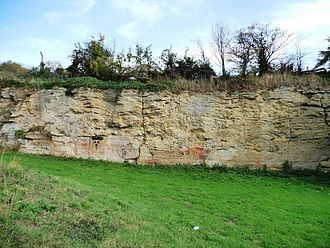 South Elmsall - The former quarry, a nationally important site