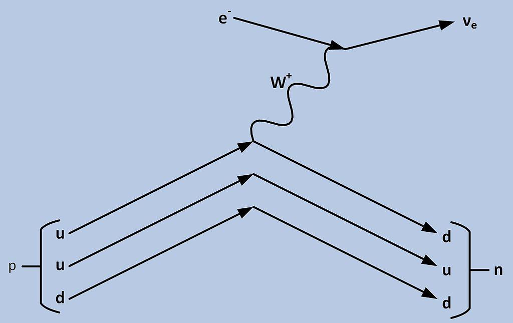 Fileec Feynmang Wikimedia Commons