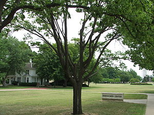 Dwight D. Eisenhower Presidential Library, Museum and Boyhood Home - Image: Eisenhower Center Grounds 060708a