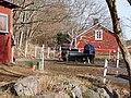 Ekebyhov-Horses-in-pasture.jpg