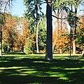 El otoño en Madrid.jpg