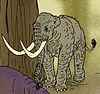 Elephas falconeri.jpg