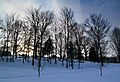 Elmwood cemetery - panoramio.jpg