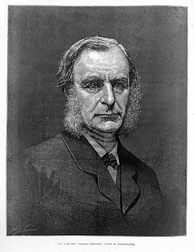 Engraving portrait of Charles Kingsley Wellcome L0011954.jpg
