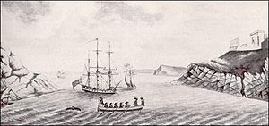 Newfoundland expedition - Image: Entrada del Puerto de Saint John