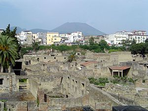 Conservation issues of Pompeii and Herculaneum - Ancient Herculaneum (bottom), modern Ercolano (center), and Vesuvius (top)