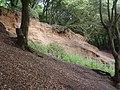 Eroding cliff - geograph.org.uk - 782446.jpg