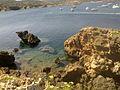 Es Grau en Menorca cala.jpg
