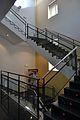 Escales del museu de Prehistòria de València.JPG