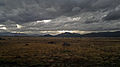 Estepa Patagonica.jpg