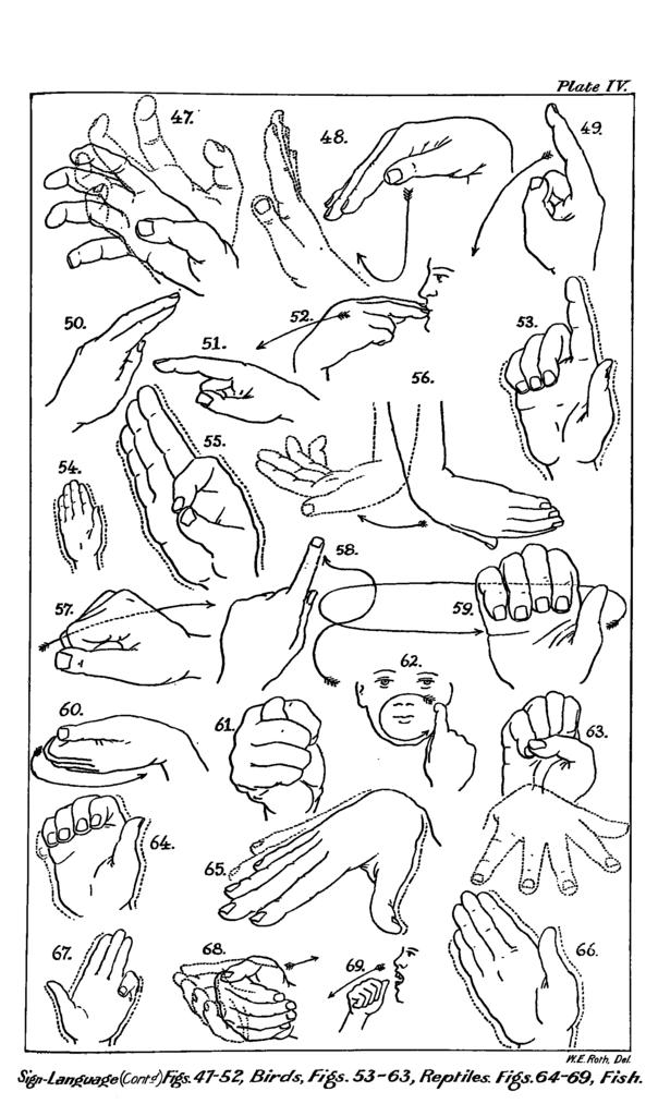 Sign Language media studies australia
