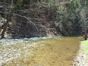 Evitts Creek (North Branch Potomac River) - Approximately a mile upstream of the confluence with the Potomac River