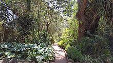 Jardins Exotiques De Bouknadel Wikipedia