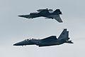 F16 + F15SG (6900915415).jpg